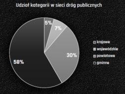 """Rys. 1 Udział kategorii dróg w sieci dróg krajowych, broszura PSWNA """"Zrównoważony rozwój dróg publicznych w Polsce"""""""