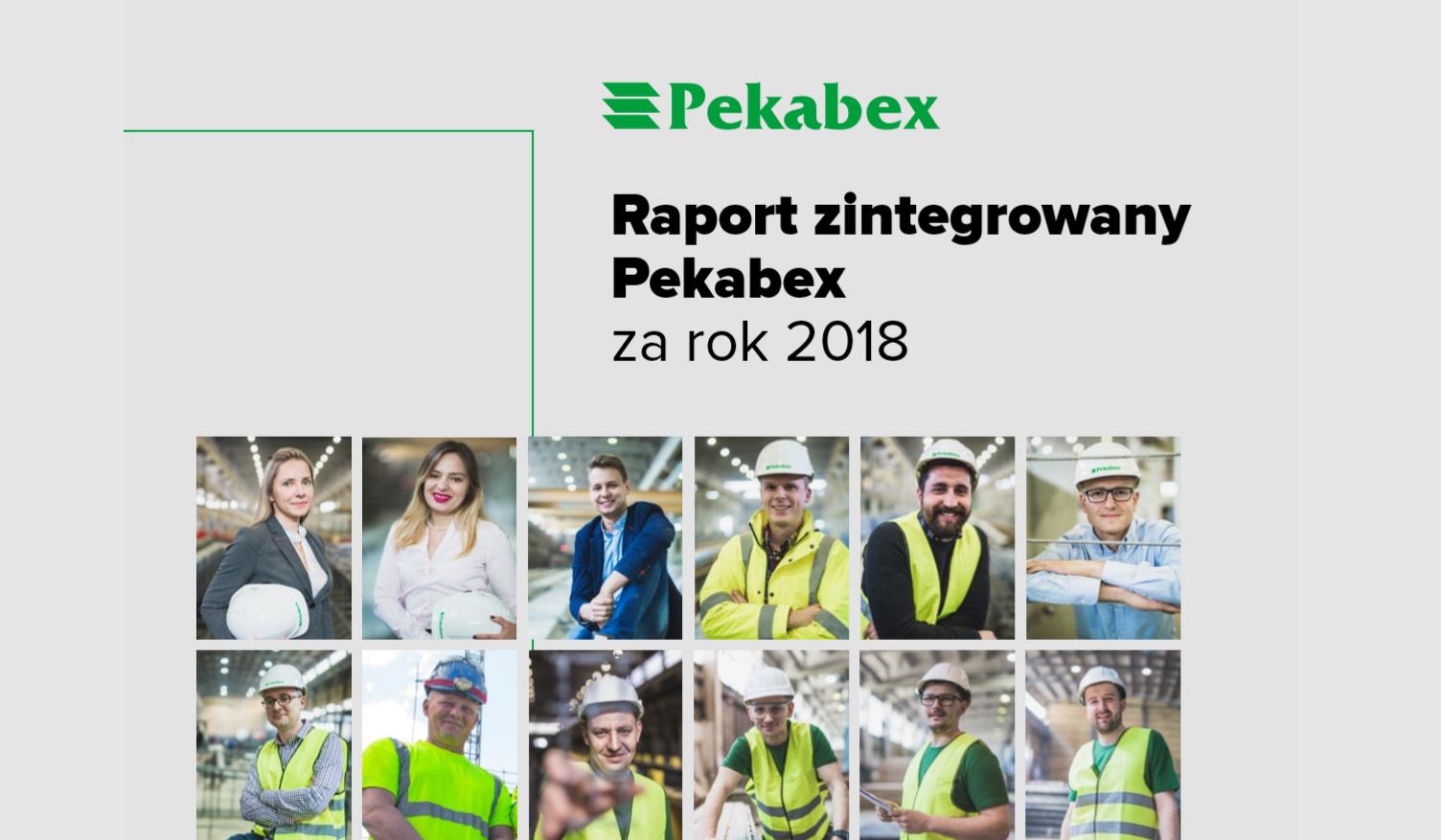 RAPORT ROCZNY GRUPY PEKABEX